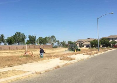 Weed Abatement on Commercial Lots